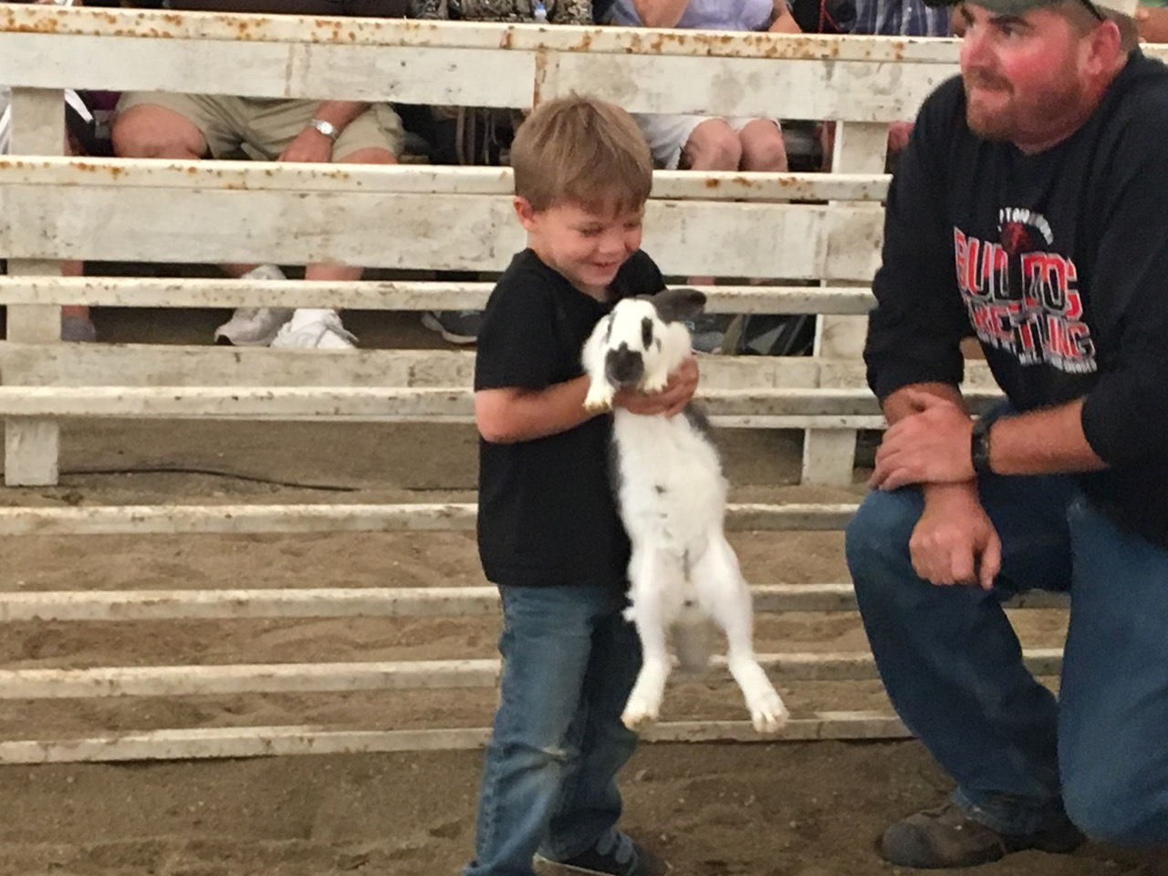 2018 Fair Photos